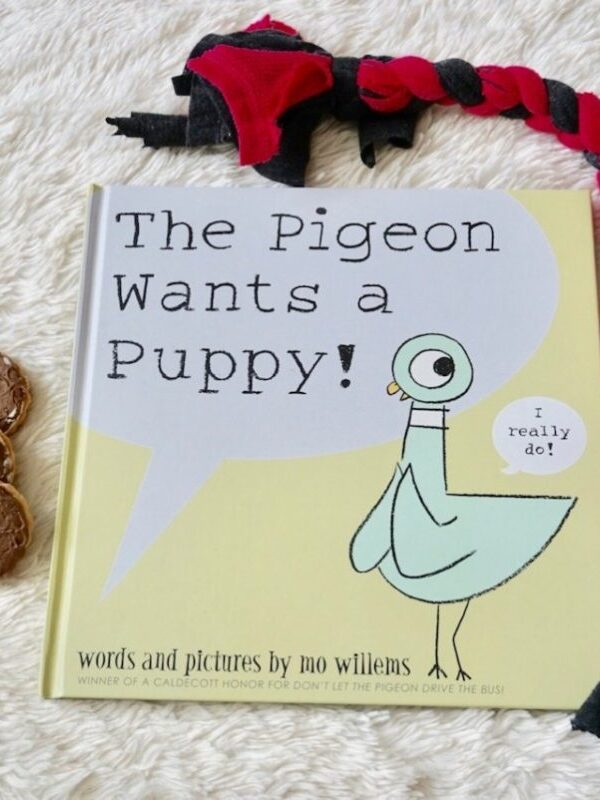 Happy 16th BIRD-day to Mo Willems' Pigeon Series