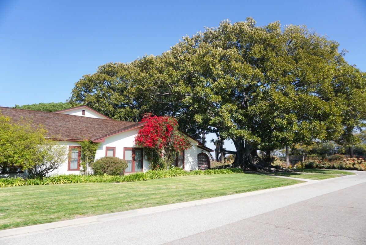 rancho los alamitos, long beach, field trip, homeschool, things to do with kids in orange county, things to do with kids during covid, free things to do with kids